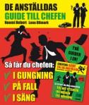 anstalldes_guide